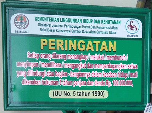 Awareness programme to prevent wildlife crimes in North Sumatra (December 12, 2017)