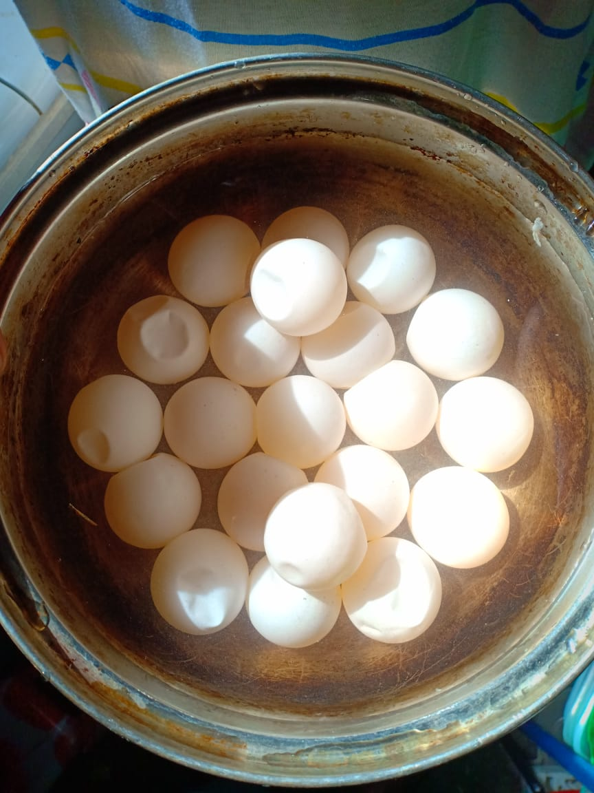 Acehnese NGO is Concerned about Illegal Collection of Turtle Eggs from the Wild (June 29, 2019)