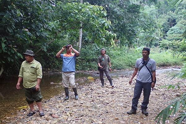 The suffering of three wild animals in Kutambaru (Marike) were discovered while Joint Patrol with Gunung Leuser N.P Authority (July 09, 2020)
