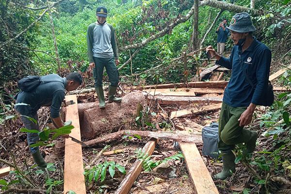 Joint Patrol in Huraba Village, Batang Toru Ecosystem,  Sumatra (May 26, 2021)